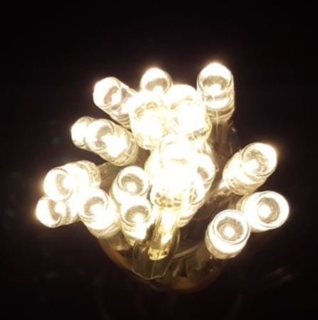 20 LED Battery Operated fairy lights in Warm White 2M